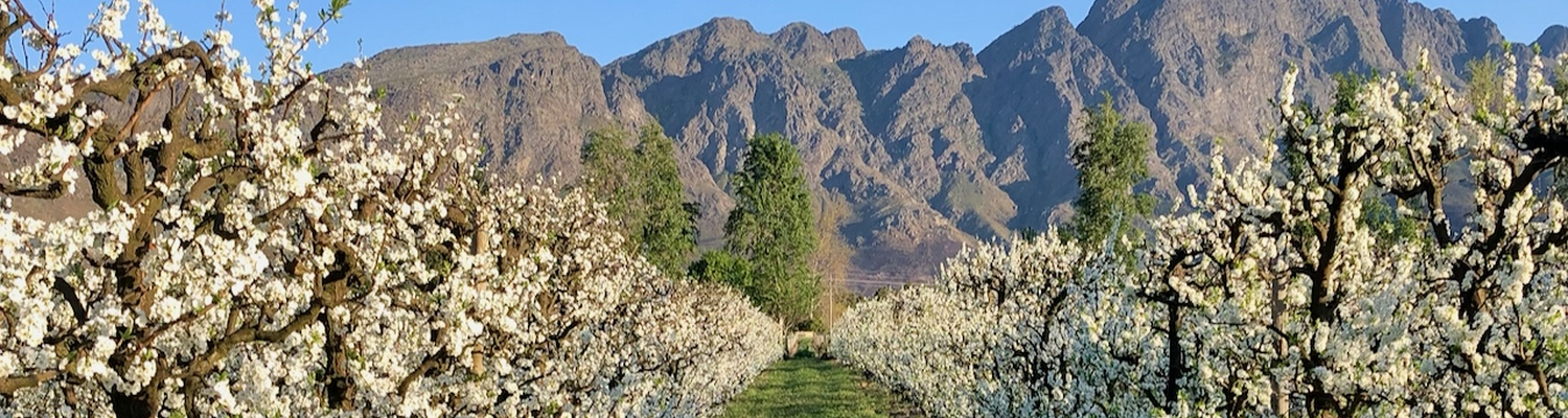 Farm stay in Franschhoek