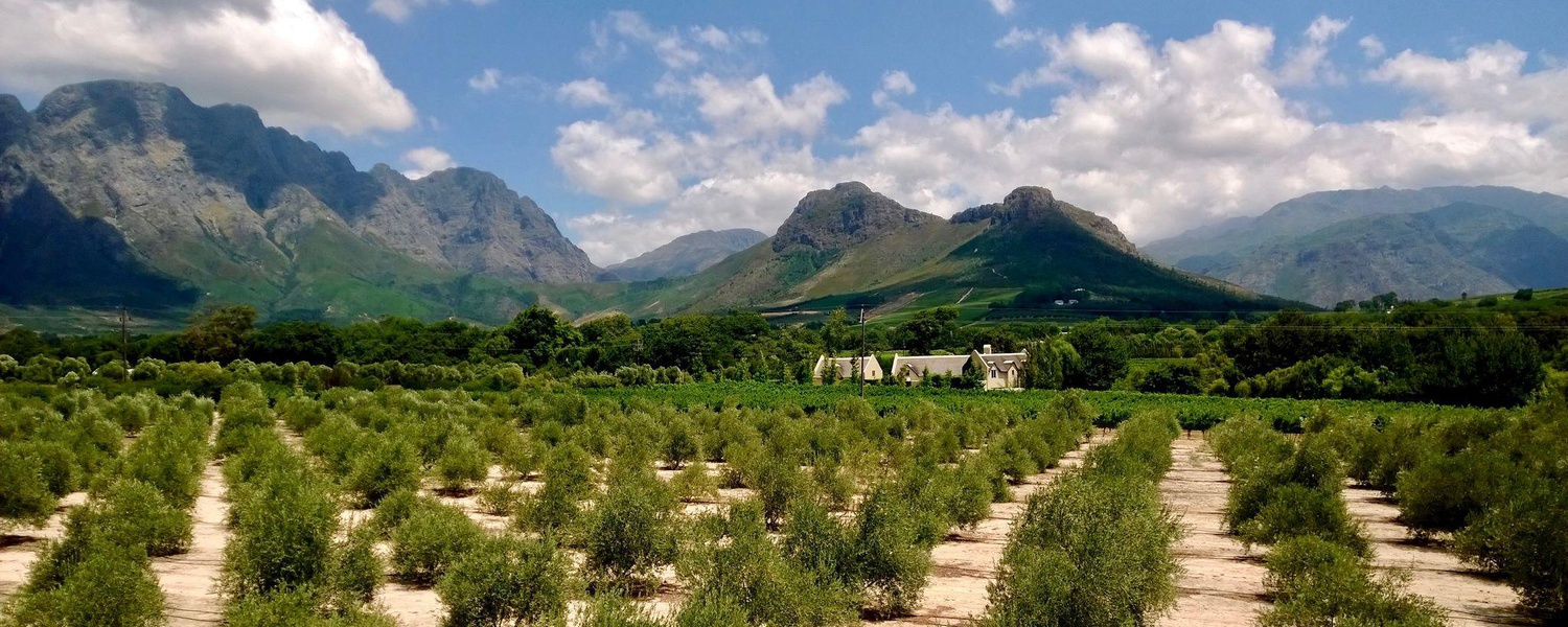 Luxury accommodation in the heart of the beautiful Franschhoek Valley